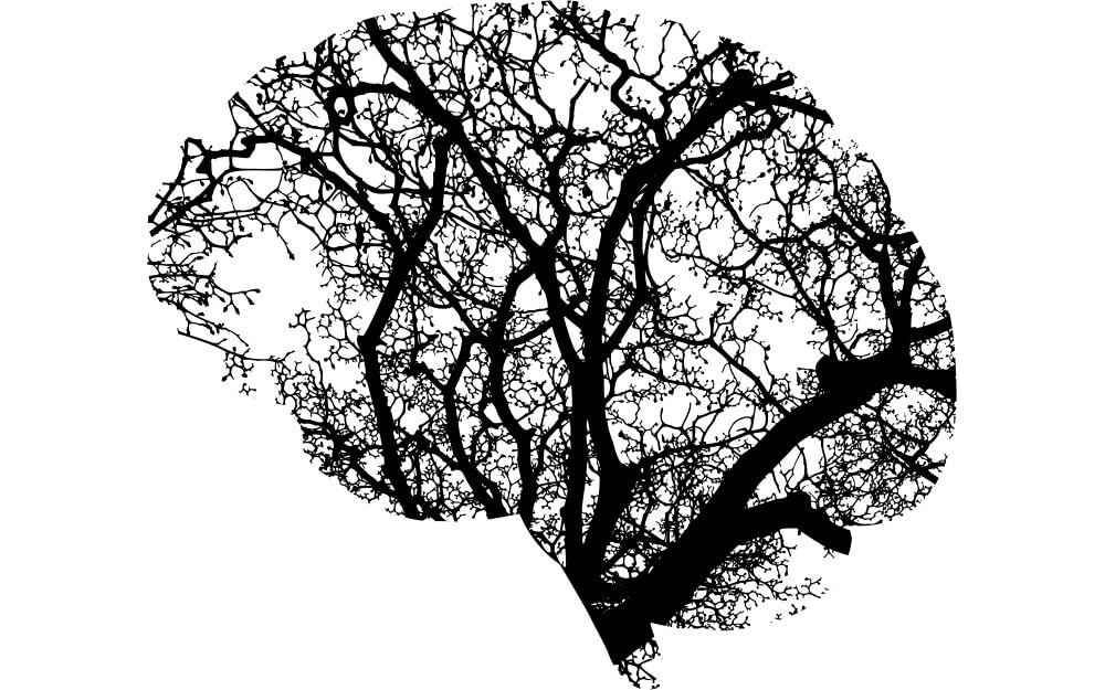 mieux-comprendre-lintelligence-artificielle